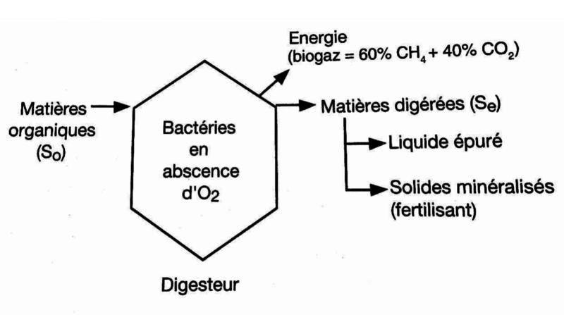biomethanisation
