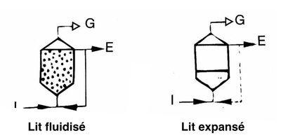 lit-expansee-fluidise