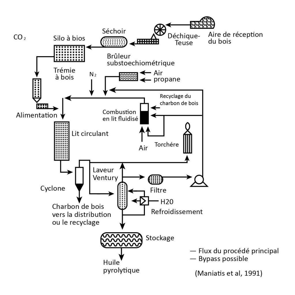 biomasse-process